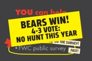No bear hunt this year! 4-3 vote