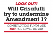 Will Crisafulli hijack Amendment 1 funds?