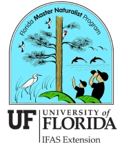 Sign-up begins for Florida Master Naturalist Program on Upland Habitats